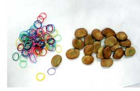 Rubber bands and beans for indigo shibori dyeing