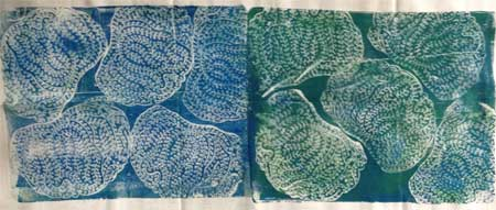 2nd try, Judy Gula Printed Fabric Bee Caribbean Ocean fabric